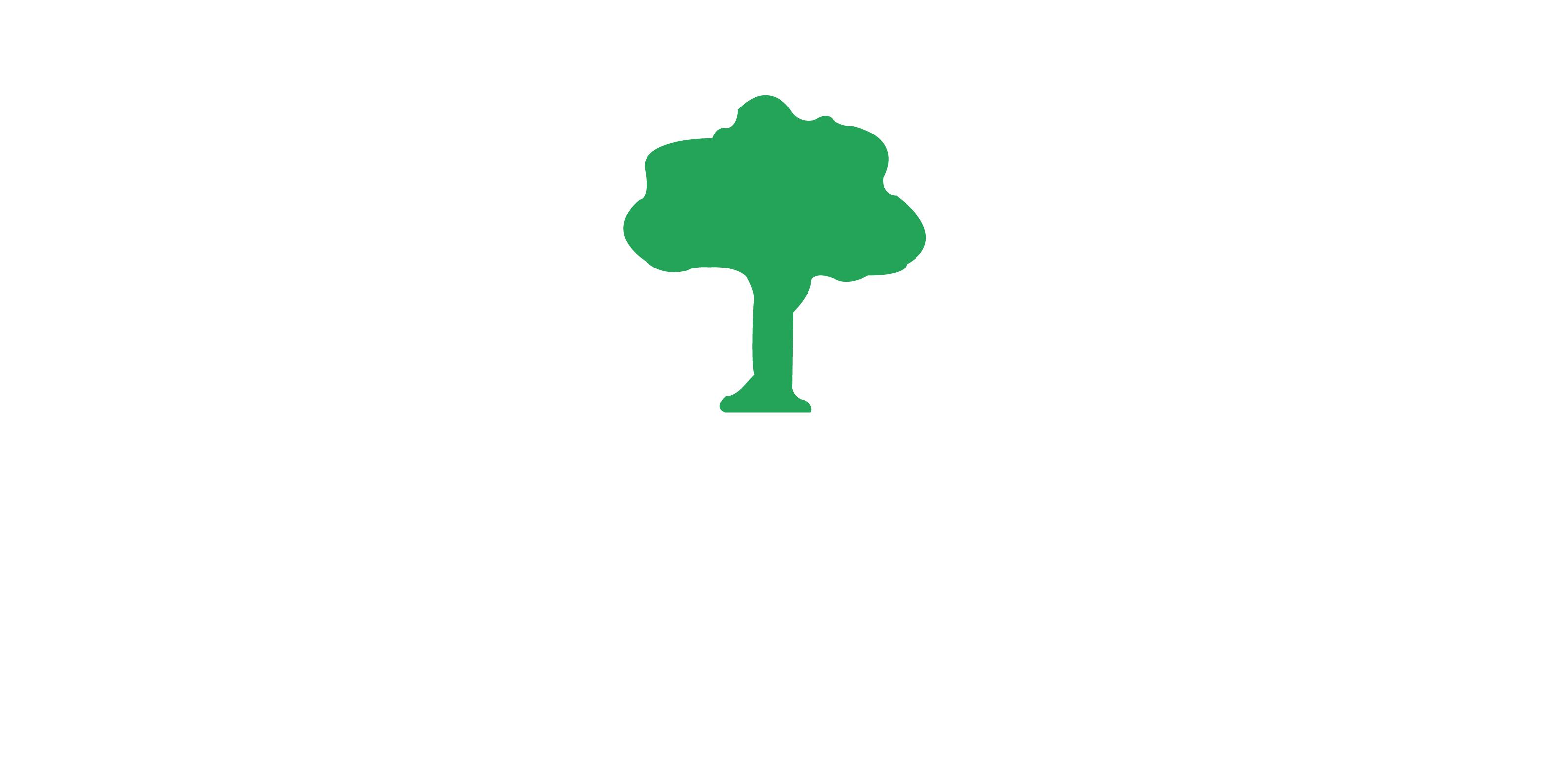JB Gardens | Garden services in Ballymena.